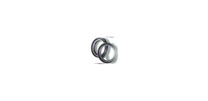 CentauroCEN Gabelsimmerringe 111A172FK 41x53x8-10,5 - entspricht AR4102 (FSM045)