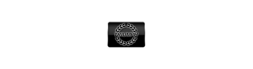Triumph - Leo Vince ladené výfuky