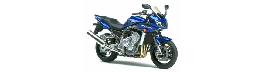 FZS 1000 2001 - 2005